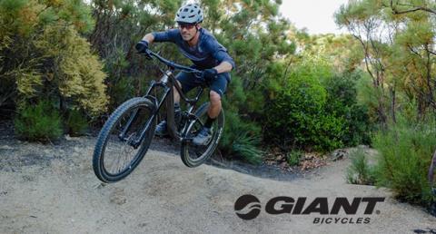 noleggio-mtb-e-bike-giant