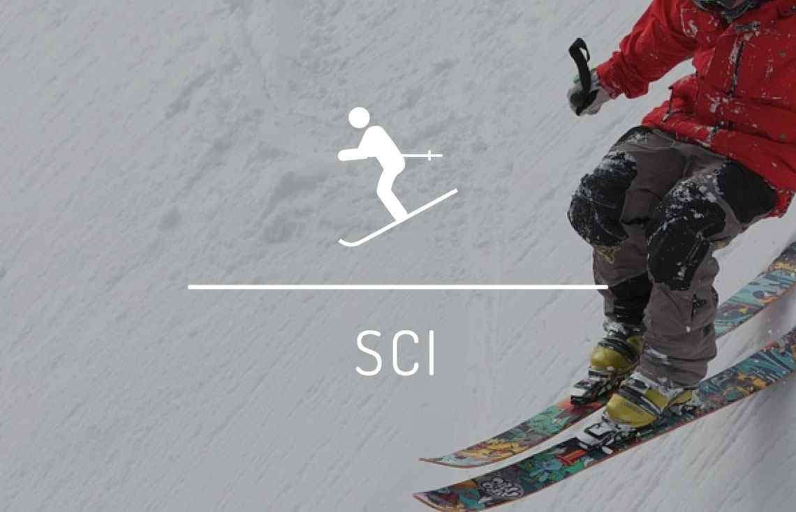 banner-jolly-sport-sci